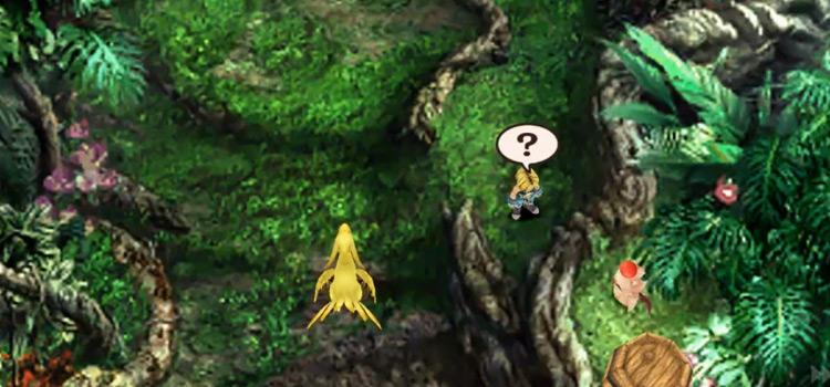 Chocobo Treasure Hunting Screenshot in FF9