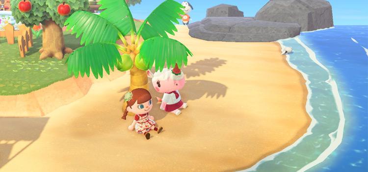 Merengue on the beach - New Horizons Screenshot