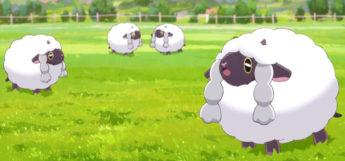 Wooloo Pokémon in Twilight Wings Anime