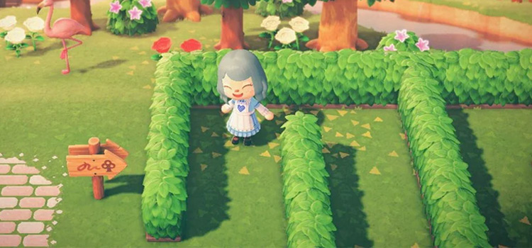 Maze Entrance in Animal Crossing New Horizons