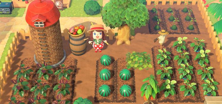 Girl Character on Farmland - ACNH