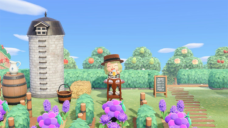 Vineyard with Grapes Design in Animal Crossing New Horizons