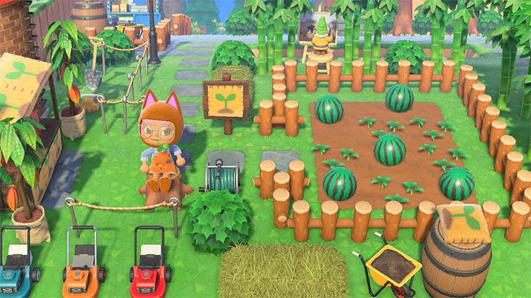 Melon Patch Farm Area in ACNH