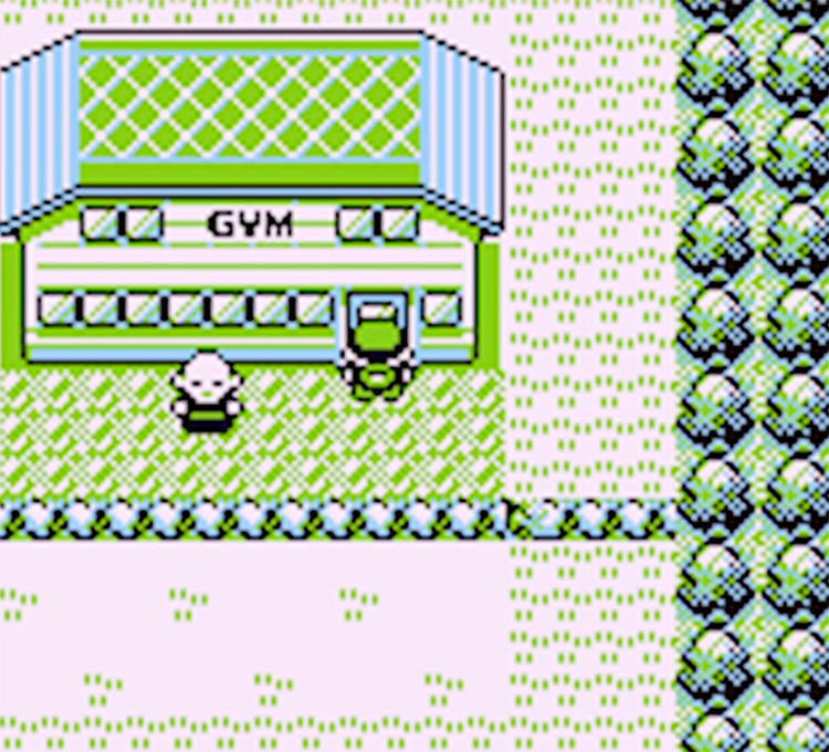 Outside Viridian Gym in Pokemon Yellow