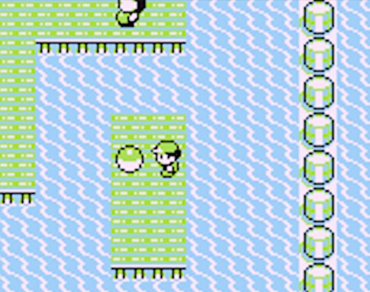 TM16 on Route 12 - Pokemon Yellow Screenshot