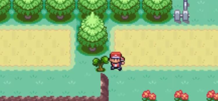 Kanto Route 15 Screenshot from Pokemon FRLG