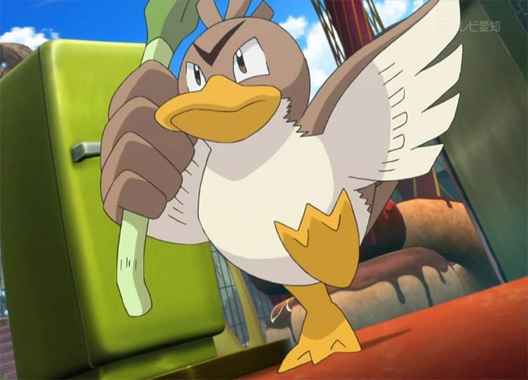 Farfetchd in the Pokemon anime