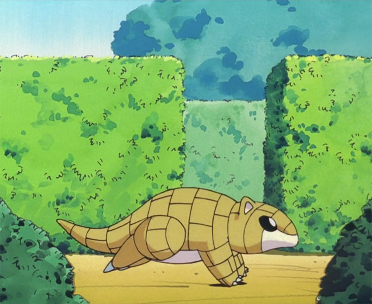 Sandshrew running in the Pokemon anime