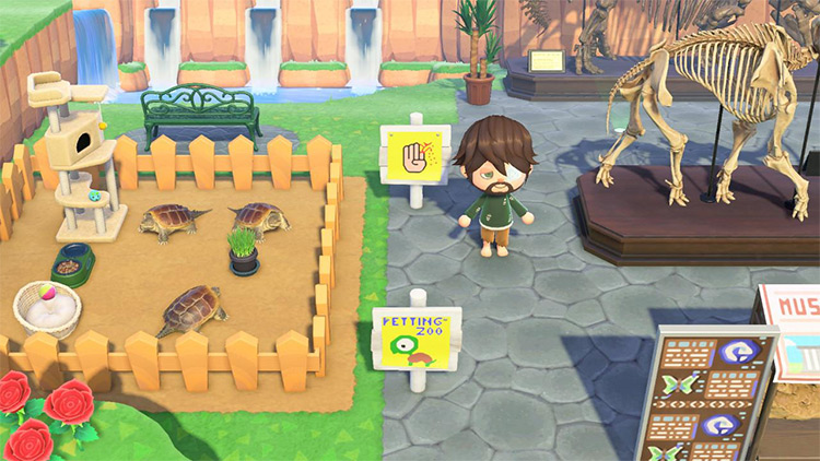 Turtle petting zoo area in ACNH