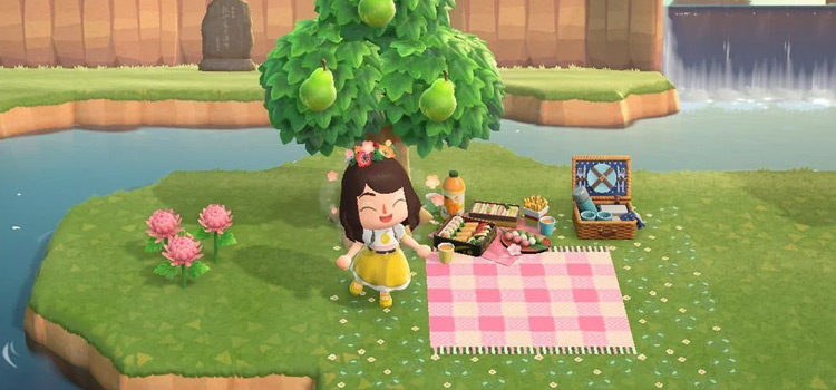 15 Picnic Area Ideas For Animal Crossing: New Horizons
