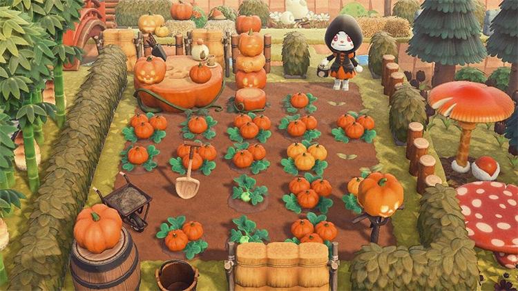 Autumn pumpkin patch idea in ACNH