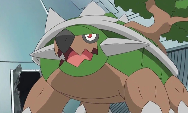 Torterra Pokemon anime screenshot