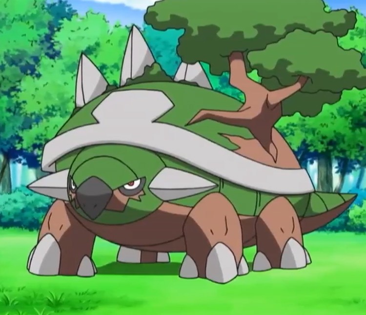 Torterra in Pokemon anime