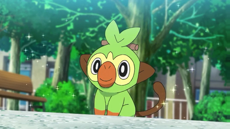 Grookey from Pokemon anime
