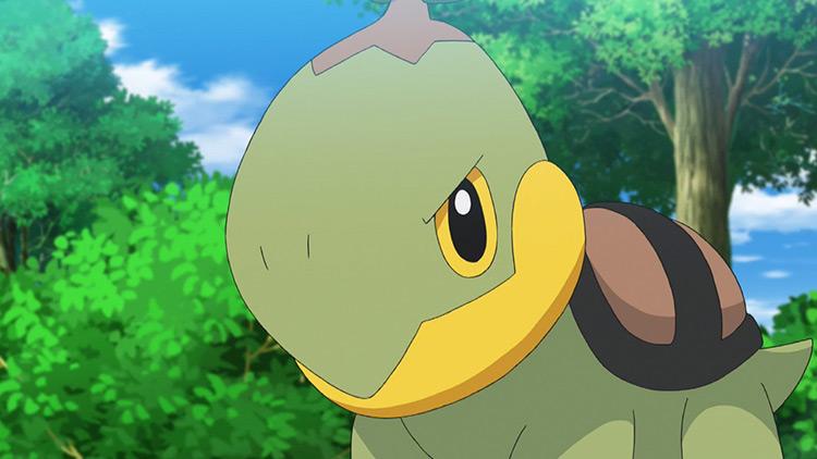 Turtwig Pokemon anime screenshot