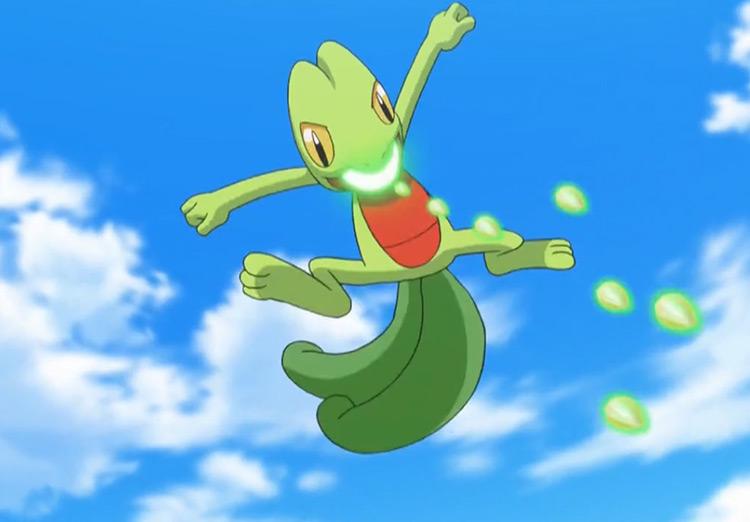 Treeko Pokemon in the anime