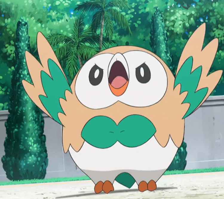 Rowlet Pokemon anime screenshot