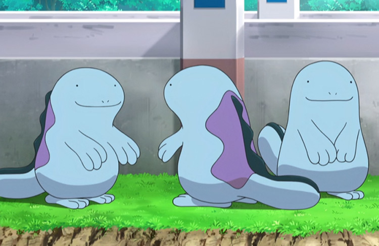 Quagsire from Pokémon anime