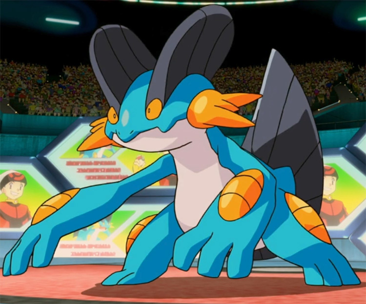Swampert - Wide Guard in the Pokémon anime