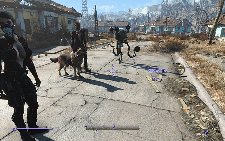 Unlimited Companion Framework Fallout4