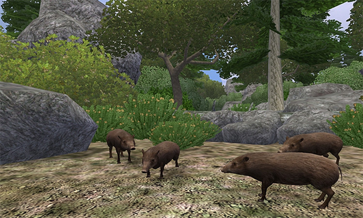 Nessich's India Zoo Tycoon 2