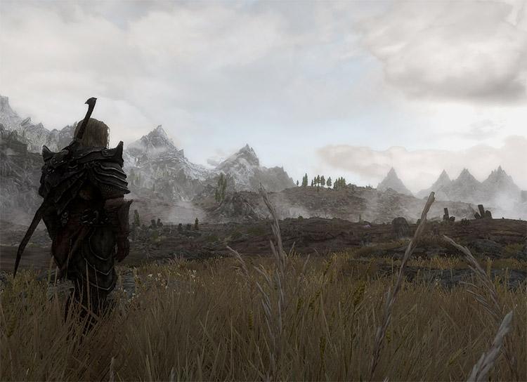 Wildcat Custom Overhaul mod for Skyrim