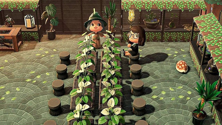 Harry Potter Herbology class outside - ACNH Idea
