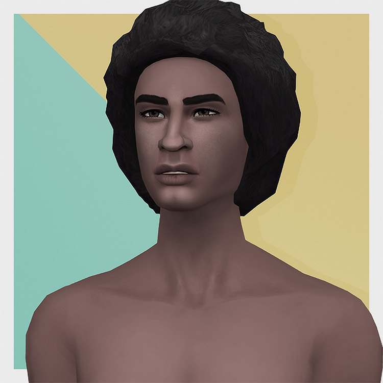 Male Medium Textured Hair Edits TS4 CC