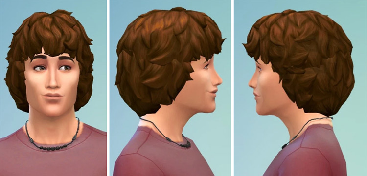 Curly 1970s Mop Hair for Men Sims 4 CC