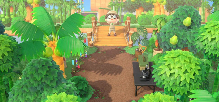 20 Junglecore Island Ideas For Animal Crossing: New Horizons