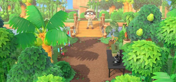 New Horizons Junglecore Explorer Screenshot