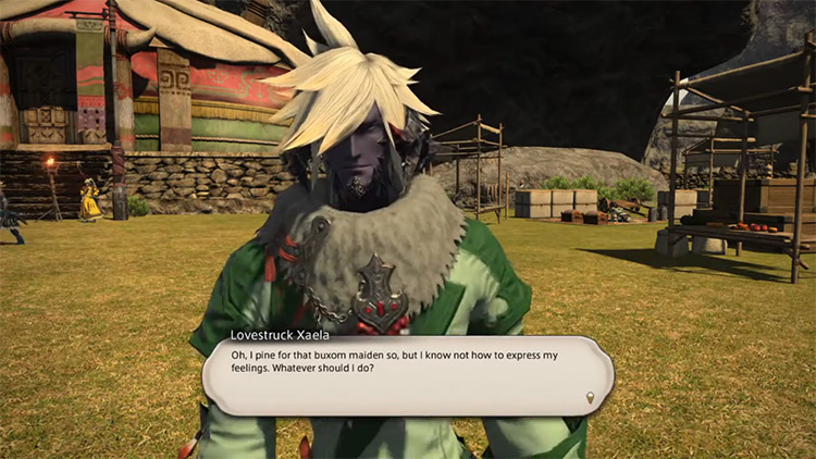 Merchant for a Day FFXIV Sidequest