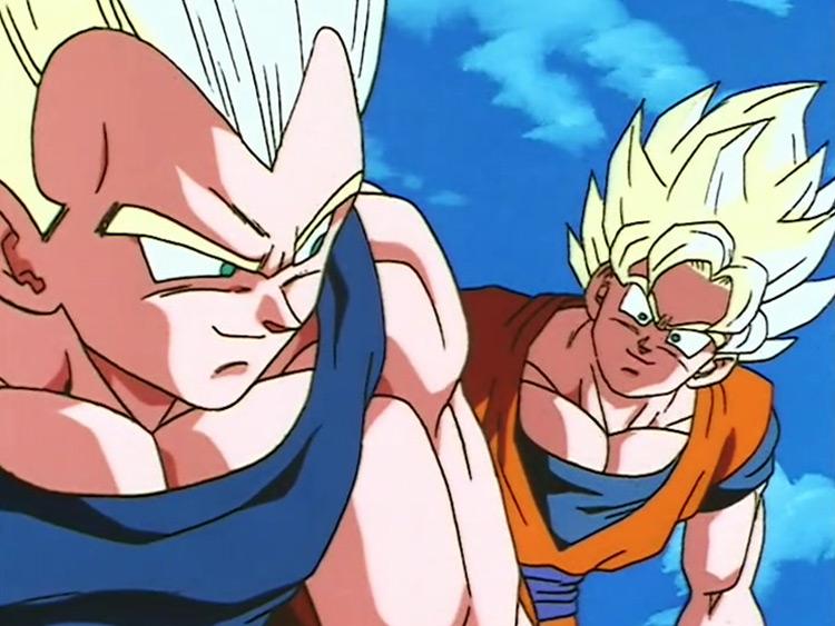 Goku and Vegeta in Dragon Ball Z anime