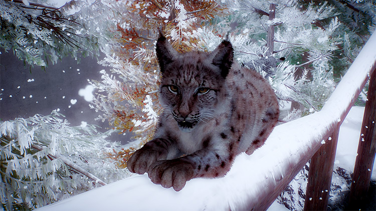 Eurasian Lynx Planet Zoo Mod