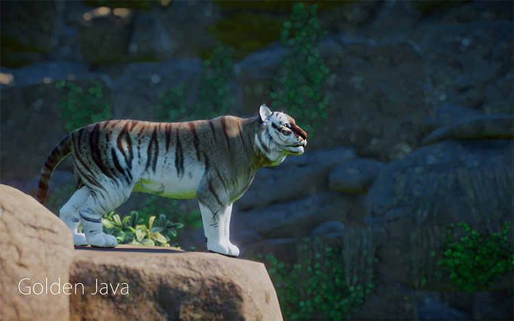 Extraordinary Tigers Planet Zoo Mod