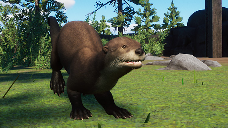 North American River Otter Mod for Planet Zoo