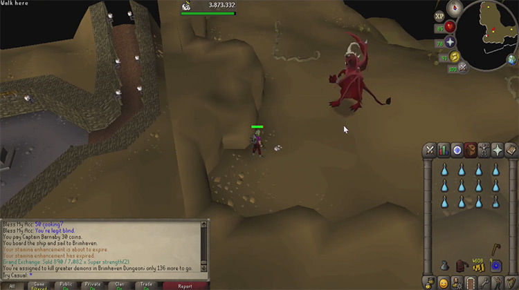 Brimhaven Dungeon OSRS game screenshot