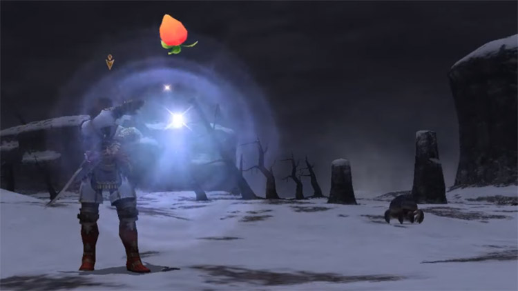 Magic Fruit Blue Magic in FFXI