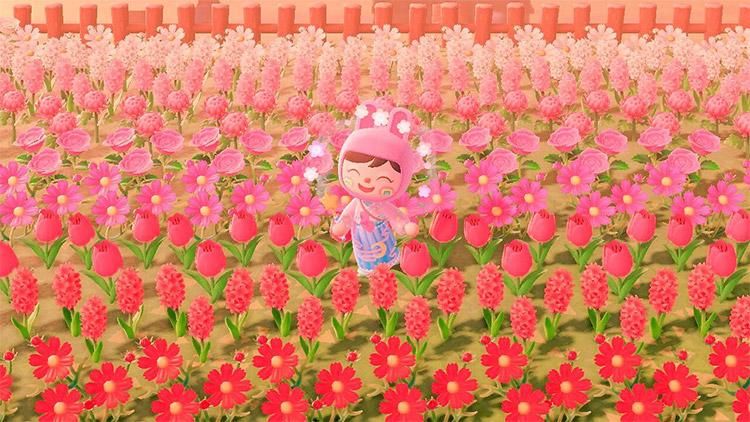 Pink flower fields designed in ACNH