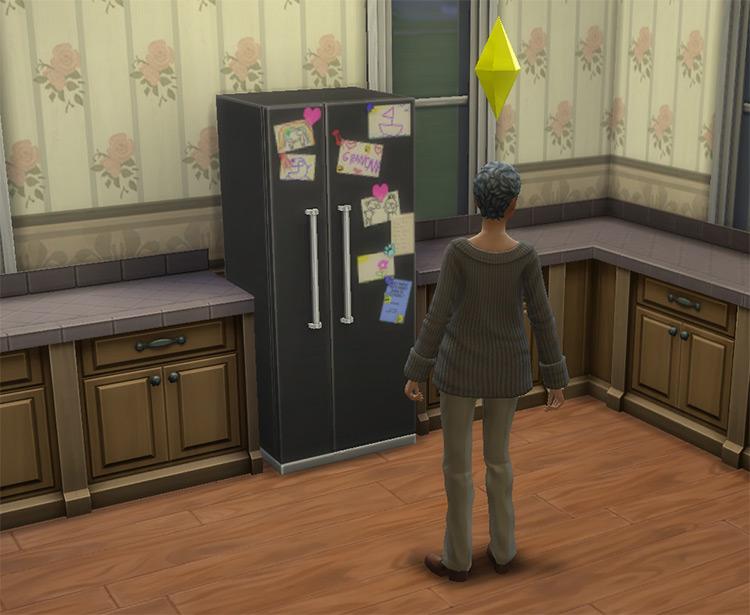 Grandma's Fridge Sims 4 CC
