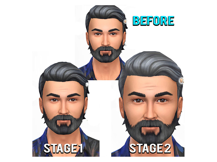 Gradual Aging Wrinkle Set for Sims 4