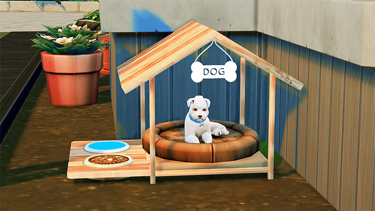 Outdoor summertime pet bed for The Sims 4