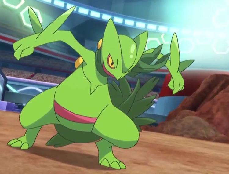 Sceptile Pokemon in the anime