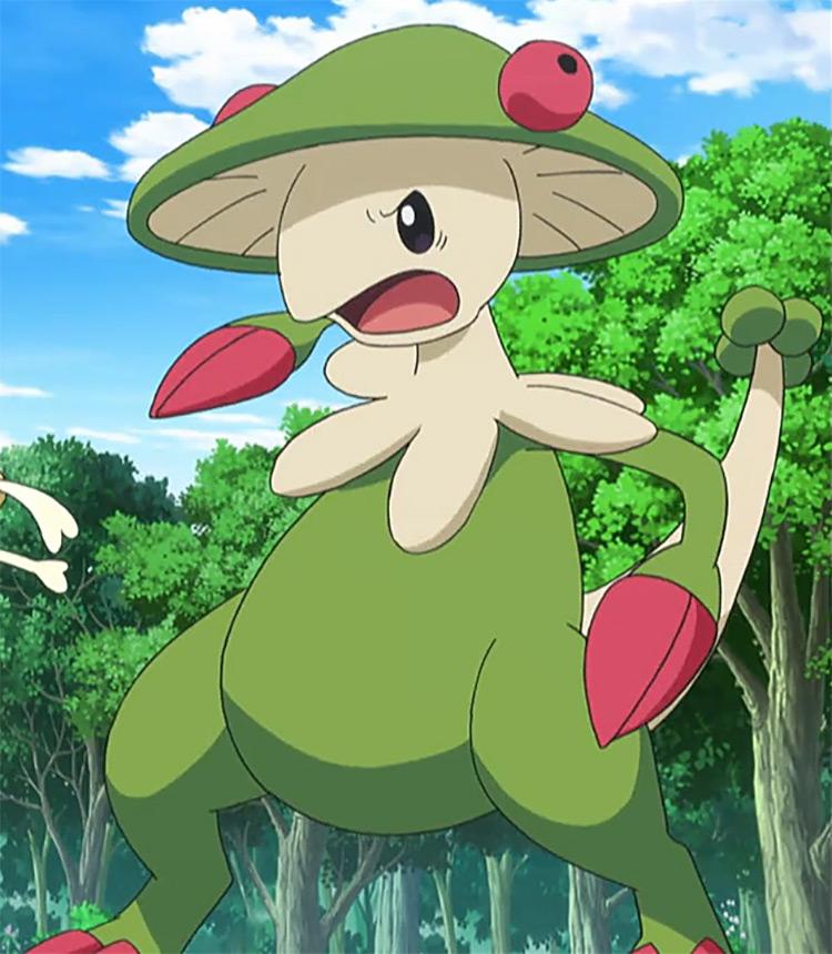 Breloom from Pokemon anime