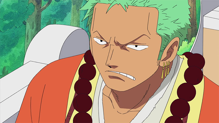 Zoro Roronoa One Piece anime screenshot