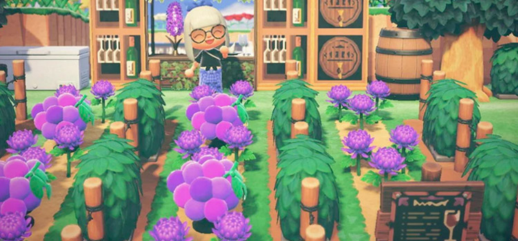 Custom winery idea in Animal Crossing New Horizons