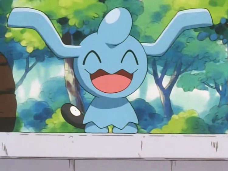 Wynaut in the Pokemon anime