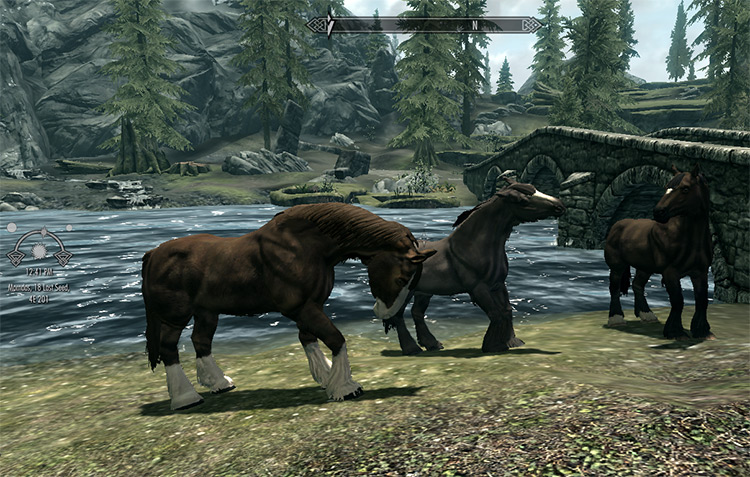 Horses of Skyrim free mod