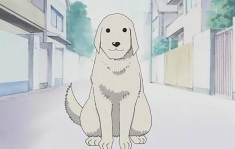 Tadakichi-san in Azumanga Daioh Anime