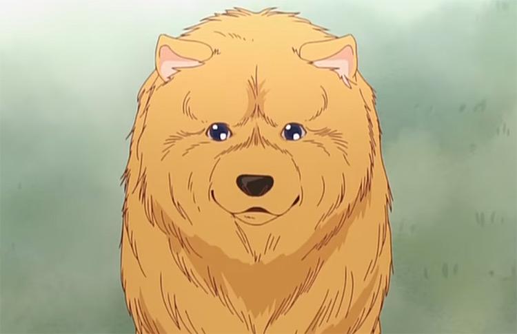 P-chan in Aru Hi Inu no Kuni kara Tegami ga Kite short Anime